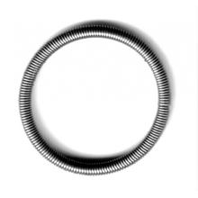 Intricate oil seal spring for industry