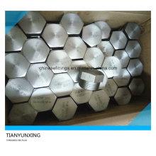 Embouchure à tête hexagonale filetée A105n en acier au carbone