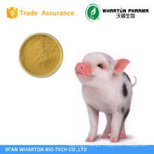 L'usine de GMP fournit la qualité supérieure et le plus bas prix Poudre de bile de porc