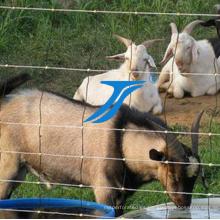 Cerca galvanizada de la granja para los ciervos o el ganado o la vaca