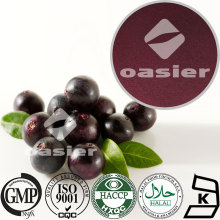 GMP Manufacturer Supplying Acai Extract Powder 10:1