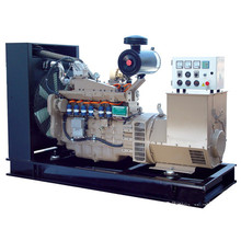 6 Cylinder LPG/Propane Gas Powered Generators