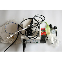Coloscope Videoscope Endoscope vétérinaire