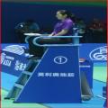 BWF Badminton Court Equipment