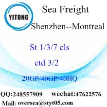 ميناء شنتشن الشحن البحري الشحن إلى مونتريال