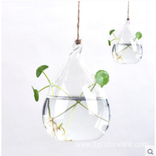 Plant Hanging Teardrop Shaped Glass Vase For Sale