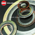 SS316 graphite Metal Gasket with IR and OR