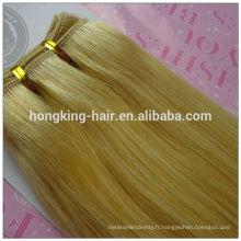 Cheveux de luxe Acceptez Paypal 100g Non Transformés Double Extension de Cheveux Dessinés Vrais Cheveux