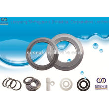 Specializing in the production of Spiral wound gaskets