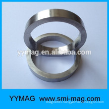 Large magnetic ring