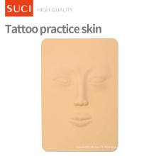 La formation de tatouage fournissent la peau pratique artificielle de pratique de tatouage de maquillage
