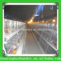 Chine populaire et bonne qualité élevage de volaille d'oeufs de poulet