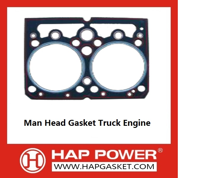 Man Heavy Truck Engine Parts