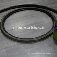 Válvula de retentor de carcaça de aço SB e vedação de óleo TB