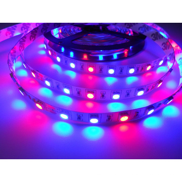 5050 60LED Luminosidade Elevada 24V R: B = 1: 2 LED Grow Strip