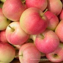 Свежие красные яблоки (импортные названия фруктов)