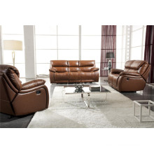 Living Room Genuine Leather Sofa (904)
