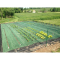 Cubierta de tierra de color verde / estera de hierba / tela de paisaje / tela geotextil