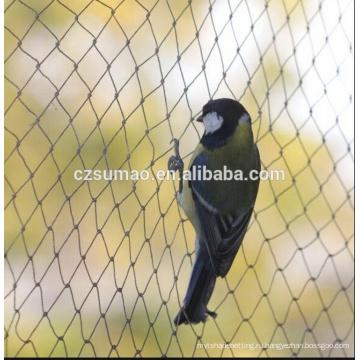 Высокое качество нового пришествия птица чистая сетки 10мм 2м Ширина