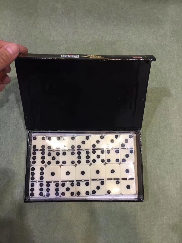 Double 6 Dominoes Game Set In Color Box