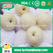 2014 neue Ernte Emerald Birnen aus China
