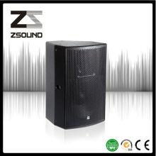 Zsound P15 Pub Rock 15 pouces Haut-parleur passif Système de renforcement Audio Designer