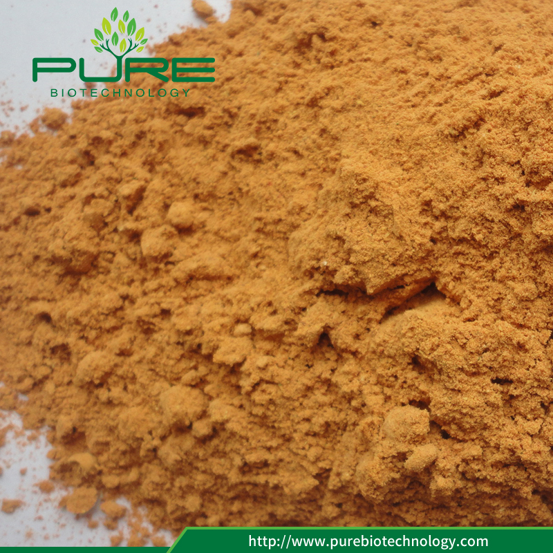 Freeze Dried Goji Berry/woflberry Powder