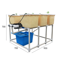 Home planting Dutch Bucket Hydroponics growing system