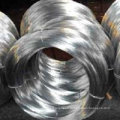 Electro galvanized wire factory,best price