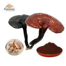 100% Pure Natural Chinese Herbal Extract/Red Reishi Mushroom 30% Polysaccharide Ganoderma lucidum Extract