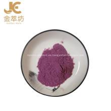 Polvo de jugo de fruta de arándano de planta natural de alta calidad