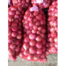 Venta caliente de la cantidad fresca enorme de la cebolla