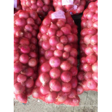 Huge Quantity Fresh Onion Hot Sale
