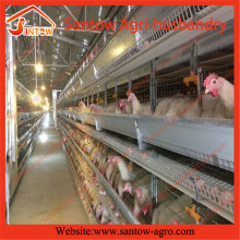 H type 5 tier chicken cage poultry cages chicken egg poultry farm equipment
