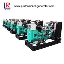 25kVA Erdgas-Generator-Set