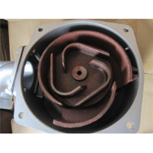 Water Pump′s Parts