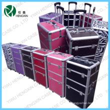 Professional Aluminum Makeup Train Case