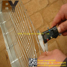 Corrosion Resistance Flexible Wire Rope Net for Climber Growth