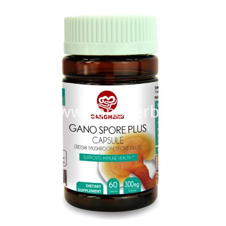 Wholesale Ganoderma Lucidum Reishi Lingzhi Herbal Capsule