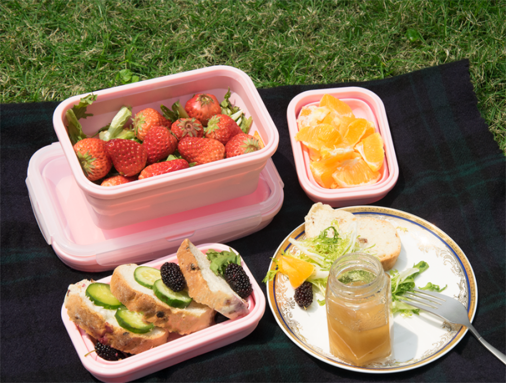 silicone lunch box (5)