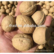 new crop walnuts china with wholesale walnuts prices