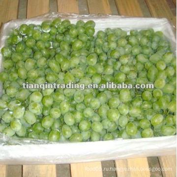Свежий зеленый виноград