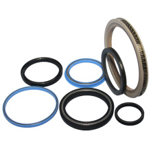 Made in China PTFE Seals Spring Energized Seals