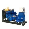 Biomasse-Gasgenerator