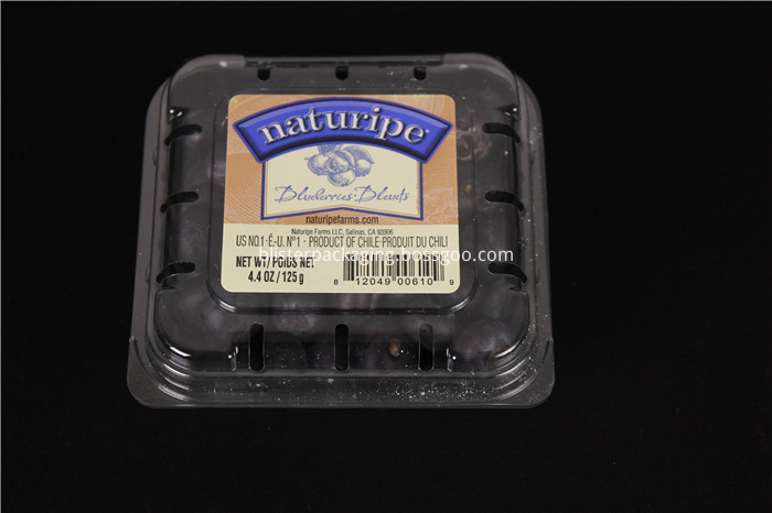 Blueberry Boxes for Packaging