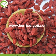 Supply Nutrition Dry Fruit Super Food Wolfberries
