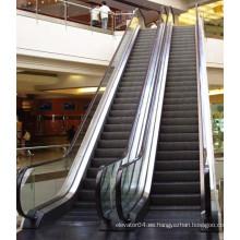 Fabricante profesional Marca famosa XIWEI Escalera mecánica, Escalera automática