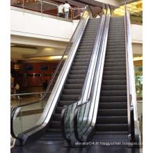 Fabricant professionnel Famous Brand XIWEI Escalier d'escalier, Escalator automatique