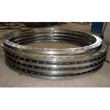 Bs Flanges / Large Size Forged Flanges
