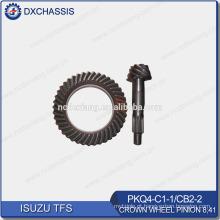 Pinhão genuíno 8:41 PKQ4-C1-1 da roda de coroa de TFS, CB2-2